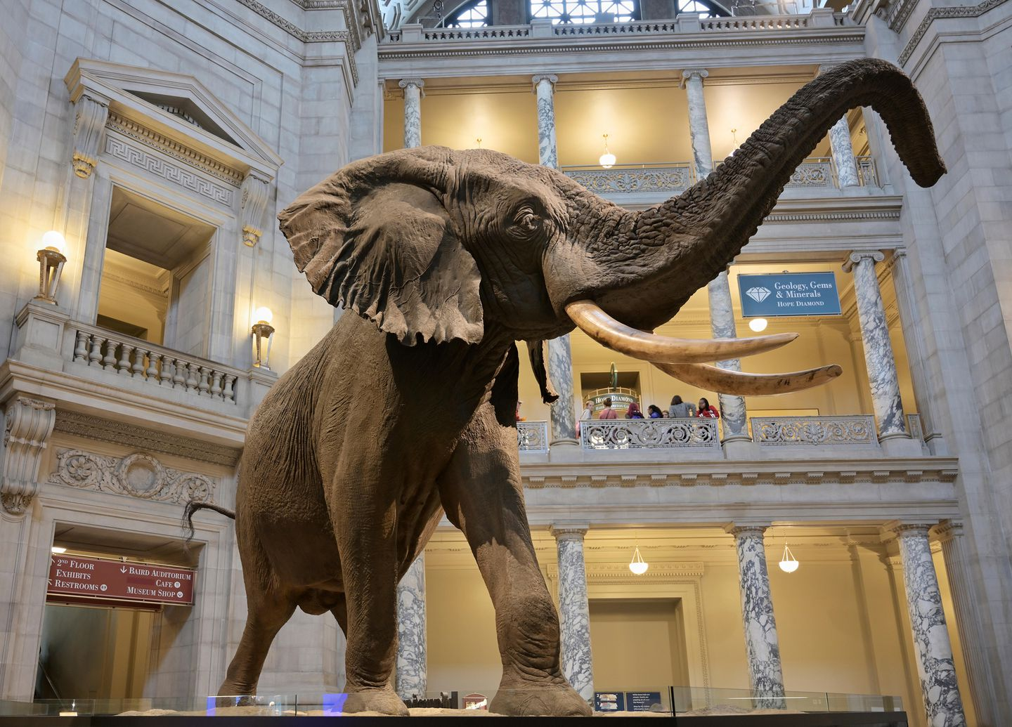 Natural History Museum entrance, Washington DC